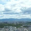 大仙公園と履中天皇陵