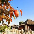 荘厳浄土寺