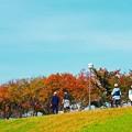 Photos: ジョギングコース