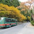 Photos: 高野山内バス