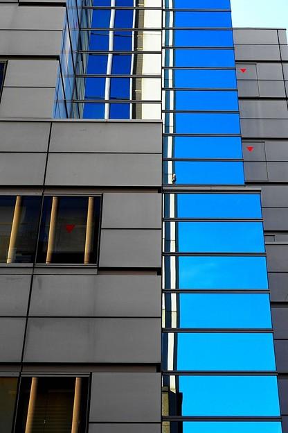Photos: 青と赤