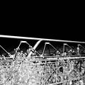 菜の花と水路橋