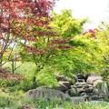 Photos: 大泉緑地公園