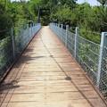 Photos: 吊り橋