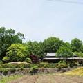 Photos: 錦織公園
