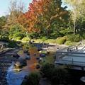 Photos: 大仙公園日本庭園