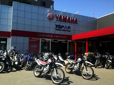 YSP八戸_01