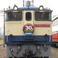 Photos: EF65 2139【JR貨物30周年HM】