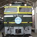 EF81 103【SPUR HM】
