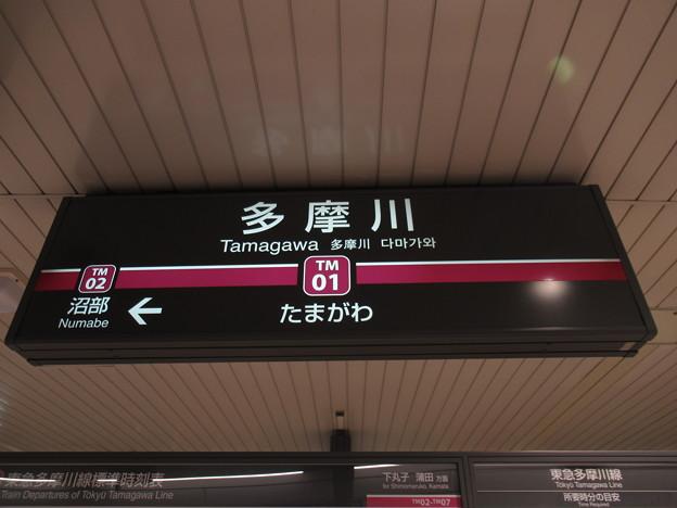 #TM01 多摩川駅 駅名標【多摩川線】