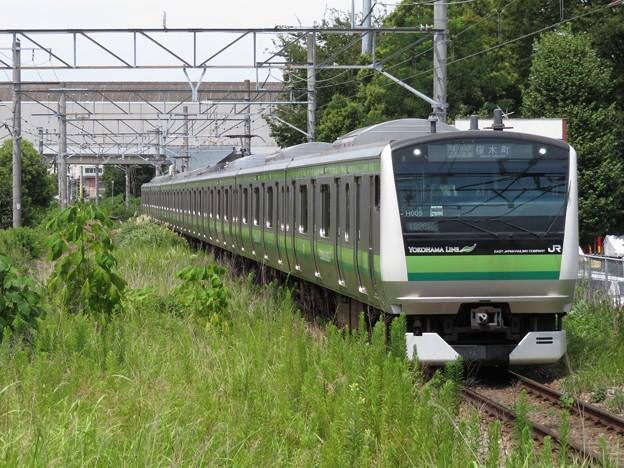 横浜線E233系6000番台 H005編成