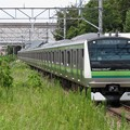 写真: 横浜線E233系6000番台 H005編成