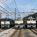 EF64 1001・EF64 1053・EF65 501・EF65 1102・EF66 27 5並び