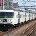 Photos: 踊り子185系200番台 B6+C7編成