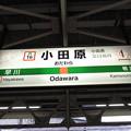 #JT16 小田原駅 駅名標【東海道線 下り】