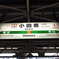 Photos: #JT16 小田原駅 駅名標【東海道線】