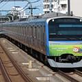 Photos: 相鉄線11000系 11004F【六代目そうにゃんトレイン】