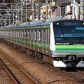 Photos: 横浜線E233系6000番台 H008編成