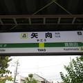 Photos: #JN03 矢向駅 駅名標【下り】