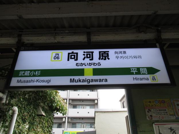 #JN06 向河原駅 駅名標【上り】