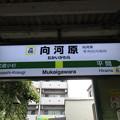 Photos: #JN06 向河原駅 駅名標【上り】