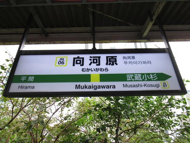 Photos: #JN06 向河原駅 駅名標【下り】