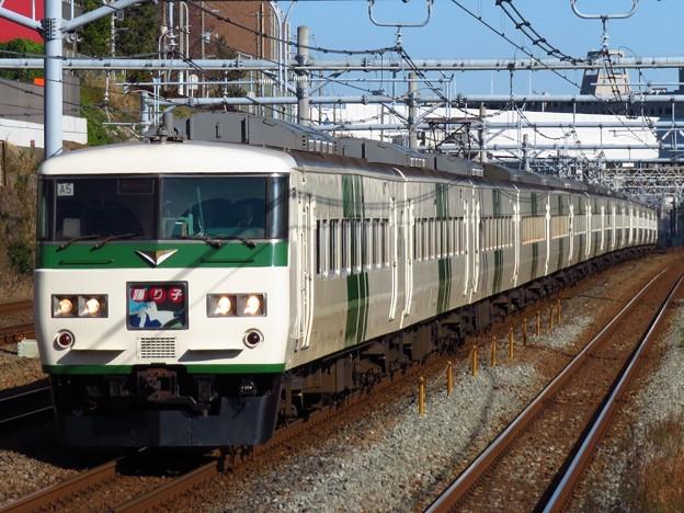 踊り子185系0番台 A5+C5編成