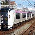 マリンエクスプレス踊り子E259系 Ne004編成