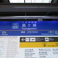 Photos: #SO09 鶴ヶ峰駅 駅名標【下り】