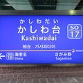 Photos: #SO17 かしわ台駅 駅名標【下り】