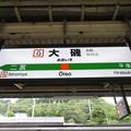 Photos: #JT12 大磯駅 駅名標【下り 1】