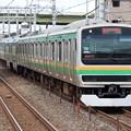 湘南新宿ラインE231系1000番台 U586+U51編成