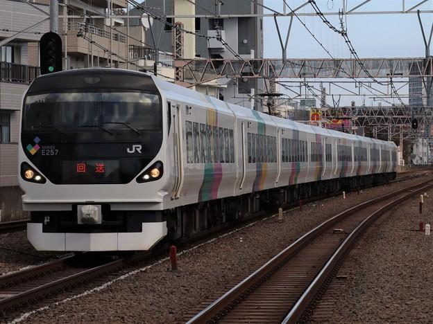 Photos: 回送列車E257系0番台 M-111編成