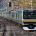 Photos: 東海道線E231系1000番台 K-30編成