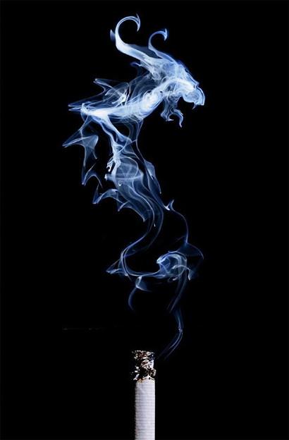 Smoke Art:タツノオトシゴ