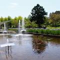 噴水のある風景