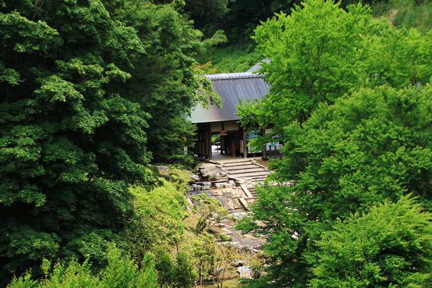 森林公園入口