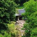 写真: 森林公園入口