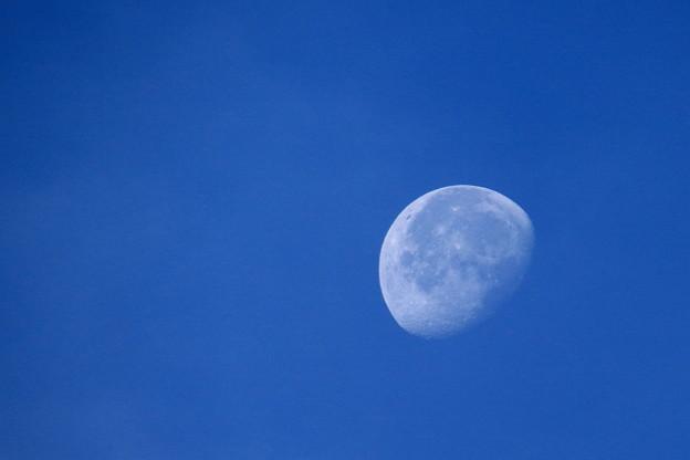 朝日が当たる月