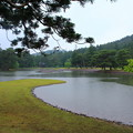 Photos: 雨の庭園 2