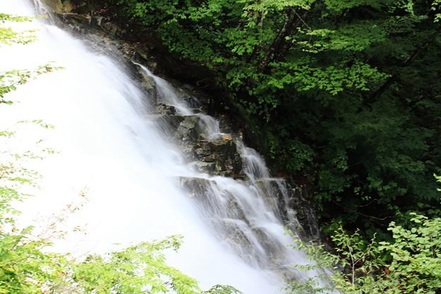 しゃくなげの滝 2
