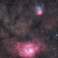 写真: M8とM20