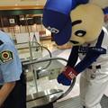 写真: 逮捕!?されるドアラ。