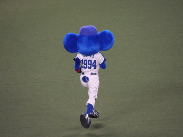 写真: 走るドアラ。