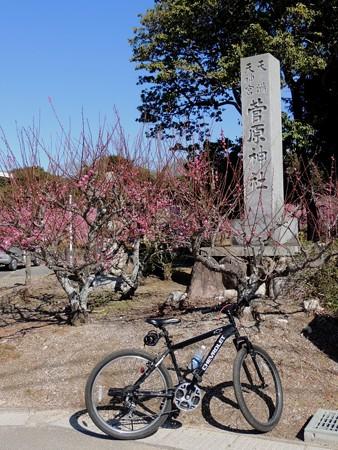 3/6(火) 菅原神社の梅を見て 野球のチケットを買いに・・・帰りは道の駅菰野とか。