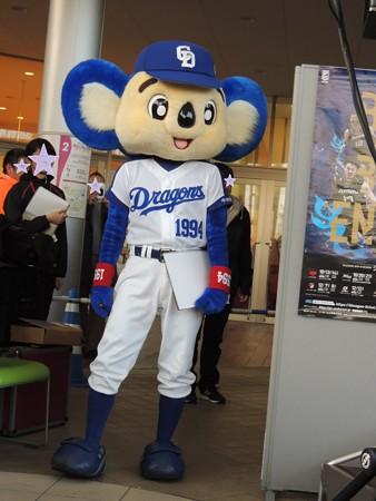 11/25(日) イオンモール名古屋茶屋のスポーツアクションにドアラ再登場で質問のコーナー。