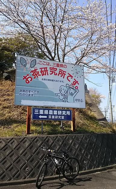 三重県農業研究所。