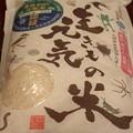 Photos: P9300037:河北潟生きもの元気米