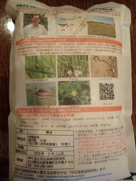 Photos: P9300035:田んぼの生きものリスト