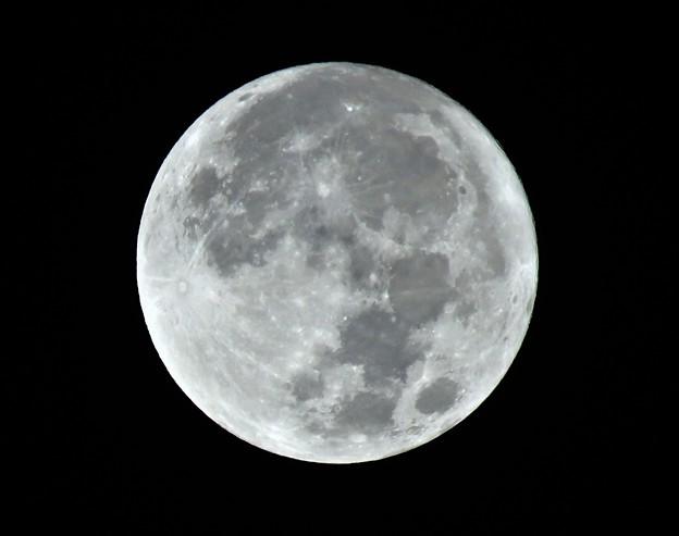 十五夜中秋の名月